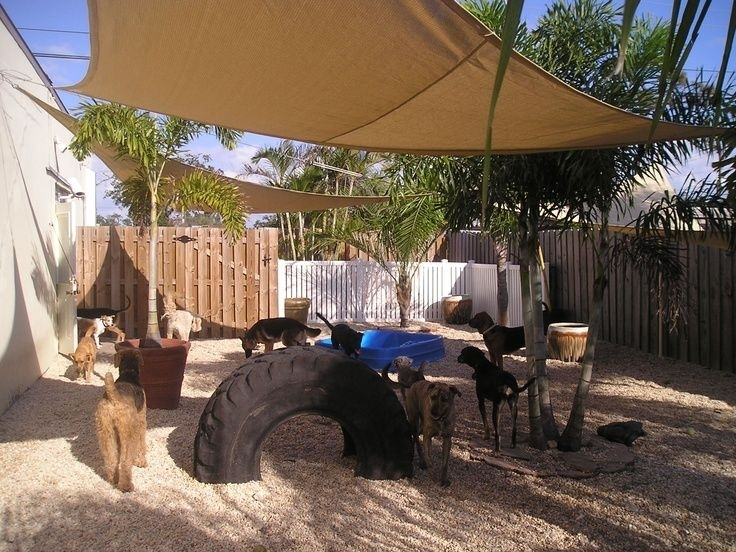 17 Best Ideas About Dog Friendly Backyard On Pinterest   Diy Dog intended for Small Backyard Landscaping Ideas For Dogs