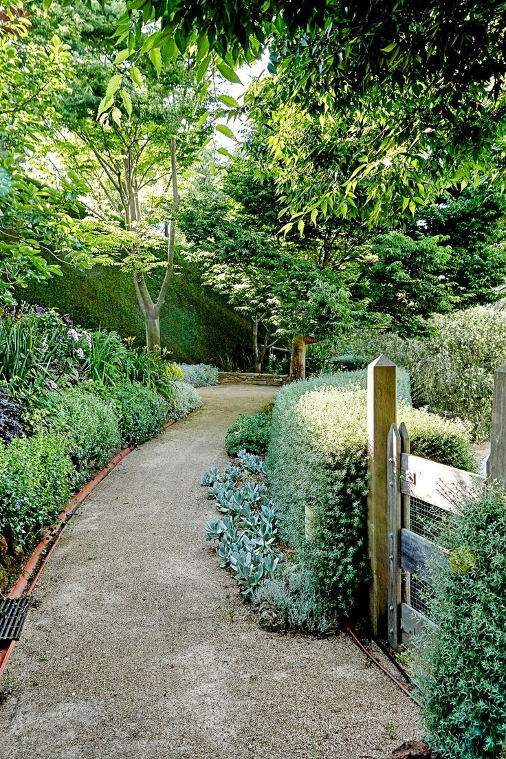 17 Best Ideas About Garden Hedges On Pinterest   Hedges, Hedges pertaining to The Best Ideas For Laurel Gardens Apartments