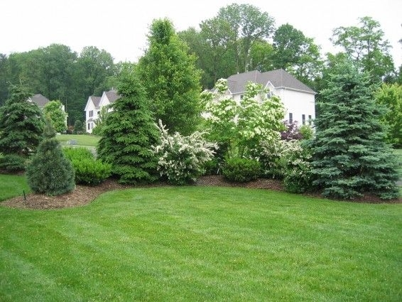 17 Best Ideas About Privacy Landscaping On Pinterest | Privacy intended for Landscaping Ideas For Front Yard Privacy