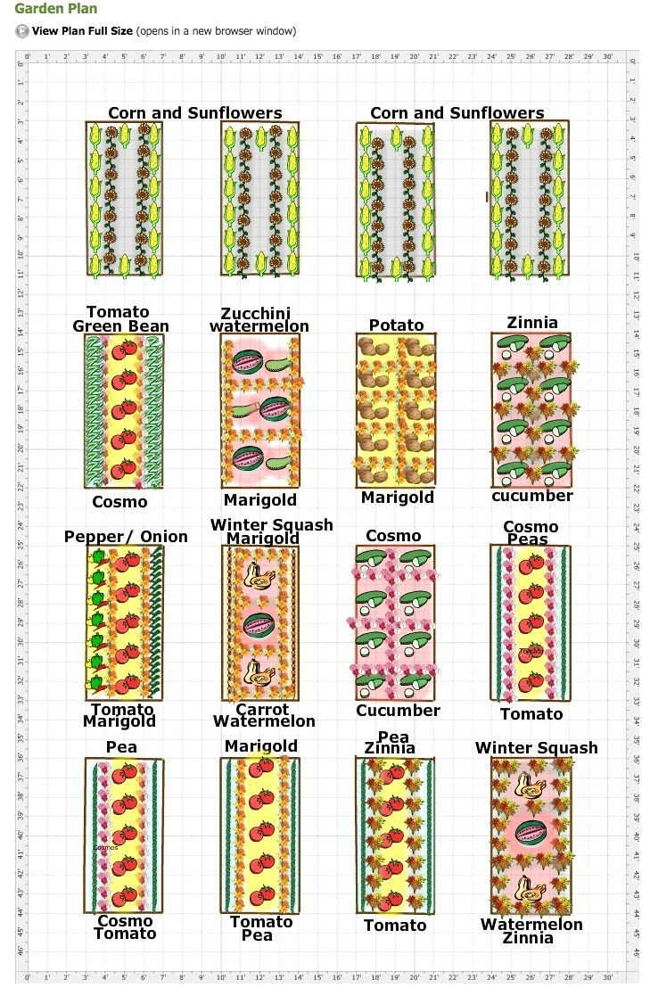 17 Best Ideas About Vegetable Garden Layouts On Pinterest | Garden throughout Best Layout For Garden Pointe Apartments Design Ideas