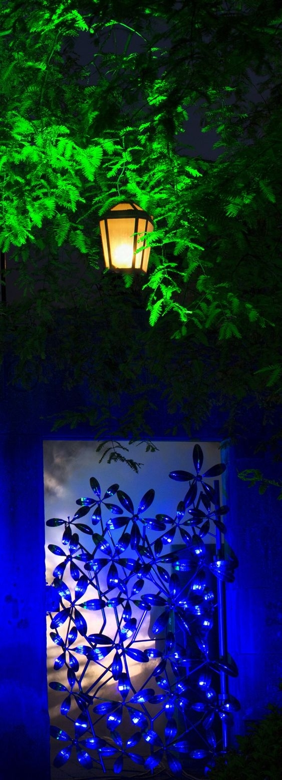 17 Best Images About Royal Botanic Garden Edinburgh. On Pinterest throughout Botanic Garden Edinburgh Light Show