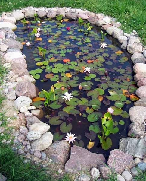 21 Garden Design Ideas, Small Ponds Turning Your Backyard intended for Garden Pond Ideas For Small Gardens