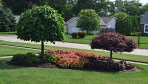 23 Landscaping Ideas With Photos. pertaining to Front Sidewalk Landscaping Ideas