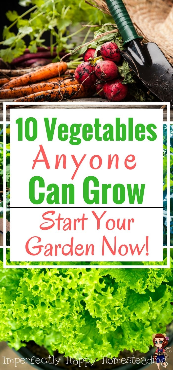 25+ Best Ideas About Growing Vegetables On Pinterest | How To Grow with regard to Garden Of Light Natural Foods Avon Ct