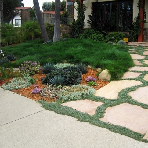 Landscaping Ideas For Front Yard No Grass - Garden Design