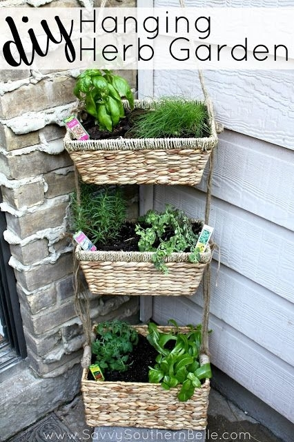 25 Best Ideas About Small Patio Gardens On Pinterest Patio With Regard To