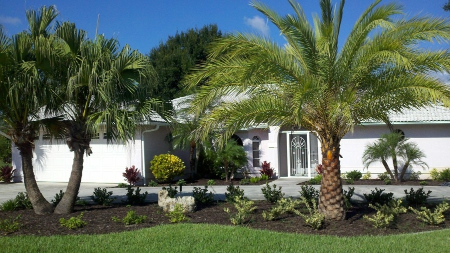 9 Best Front Yard Landscaping Ideas With Palm Trees | Walls-Interiors regarding Landscaping Ideas Front Yard Palm Trees