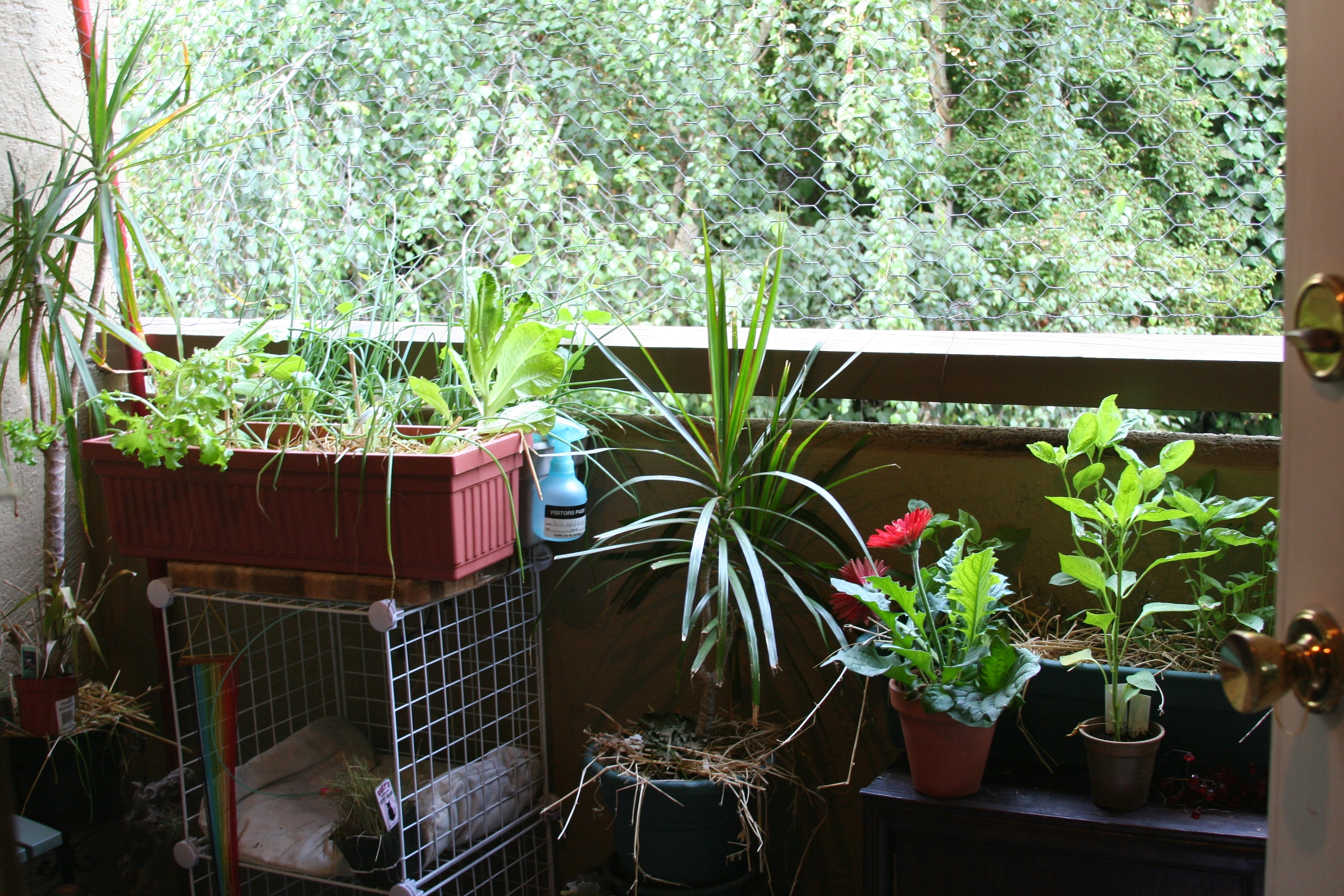 Apartment Balcony Garden - The Gardens with regard to The Best Ideas For Apartments For Rent In Garden Grove