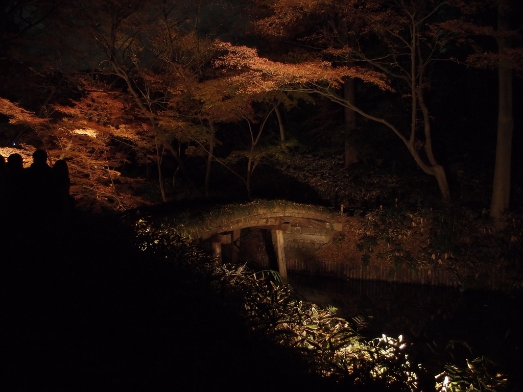 Autumn Illumination At Rikugien Garden In Tokyo - Attraction In regarding Rikugien Garden Autumn Light Up