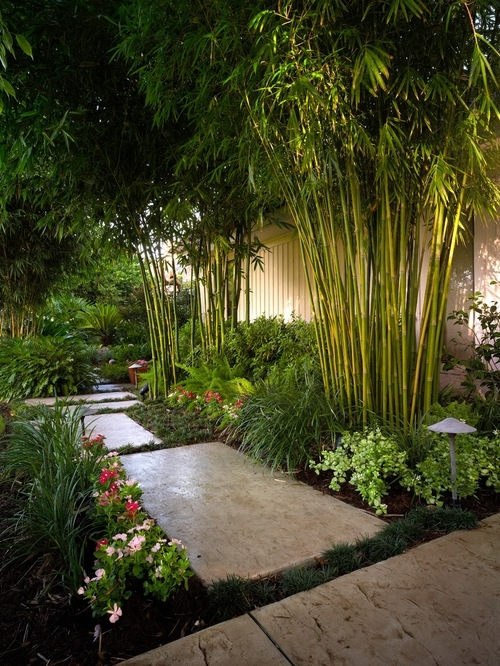 Best Tropical Landscape Design Ideas & Remodel Pictures | Houzz throughout Tropical Garden Ideas For Small Gardens