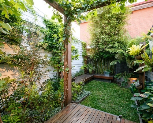 Best Tropical Landscape Design Ideas & Remodel Pictures | Houzz within Tropical Garden Ideas For Small Gardens