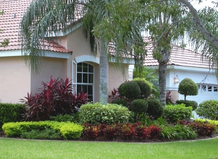 Contemporary Shaded Front Yard Landscaping Ideas With Palm Tree for Landscaping Ideas For Front Yard Trees