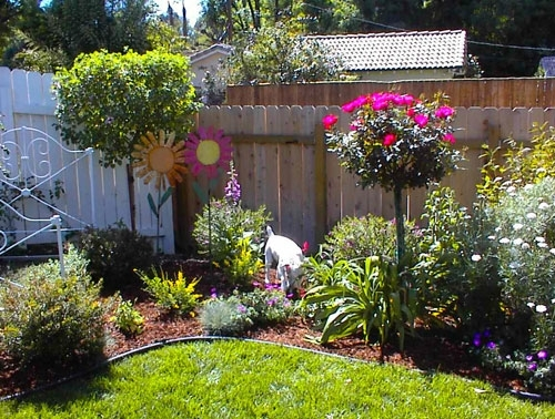 Country Garden Ideas For Small Gardens with Country Garden Ideas For Small Gardens