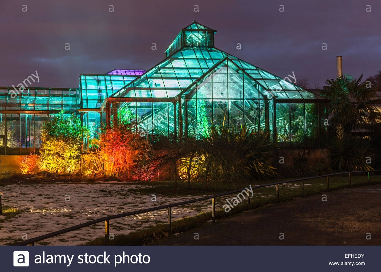 Glasgow Botanic Gardens Stock Photos & Glasgow Botanic Gardens in Botanic Garden Glasgow Light Show