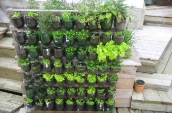 Ideas For Gardens Garden Raised Beds Exterior Amusing Fencing with Apartment Kitchen Garden