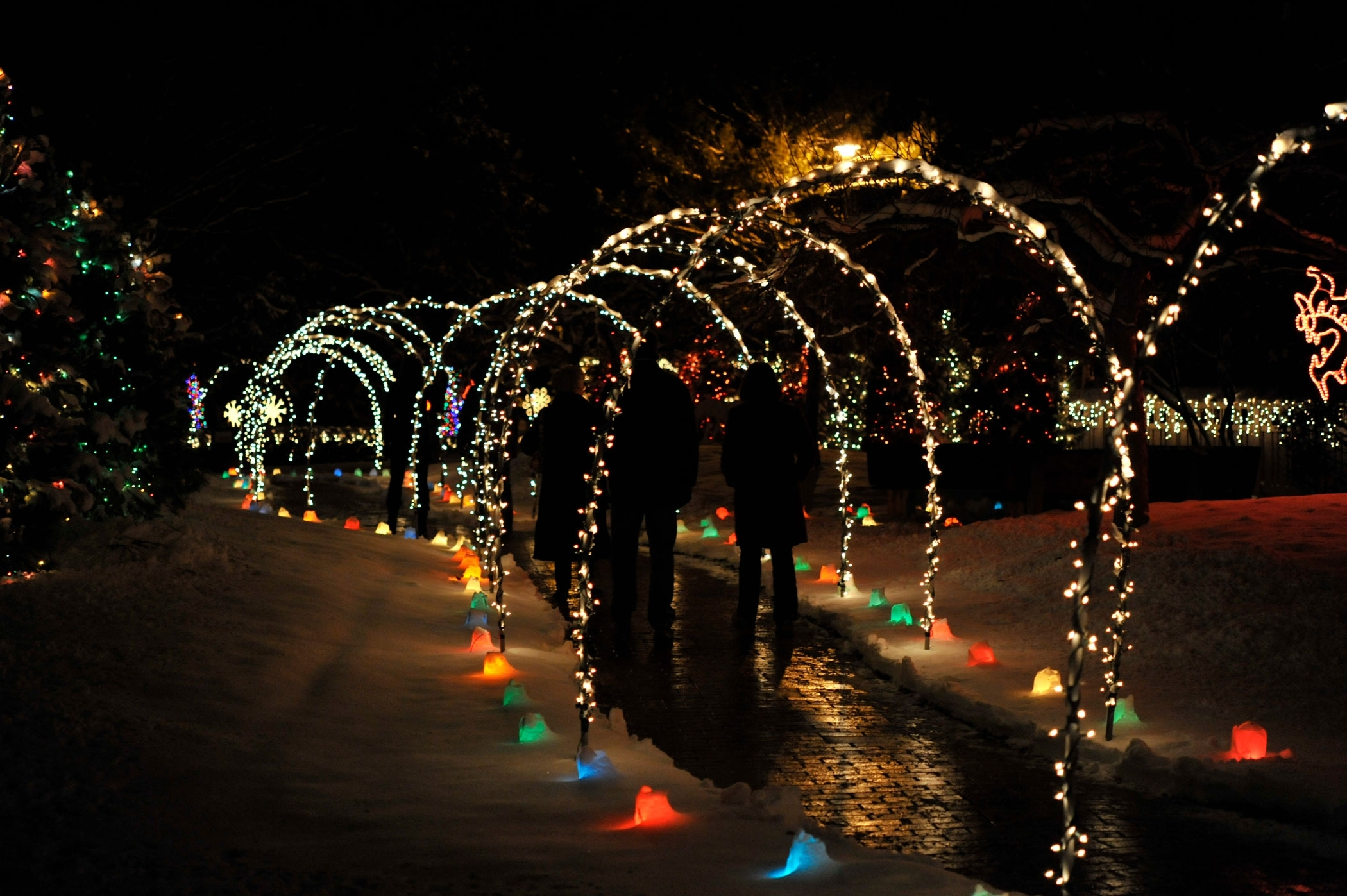 Janesville Images | Rotary Botanical Gardens - Rotary Botanical throughout Rotary Garden Light Show Janesville Wi