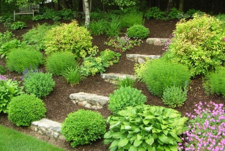 Landscape Steps On A Hill   Member Inspired Landscaping Ideas with regard to Small Garden Ideas On A Hill