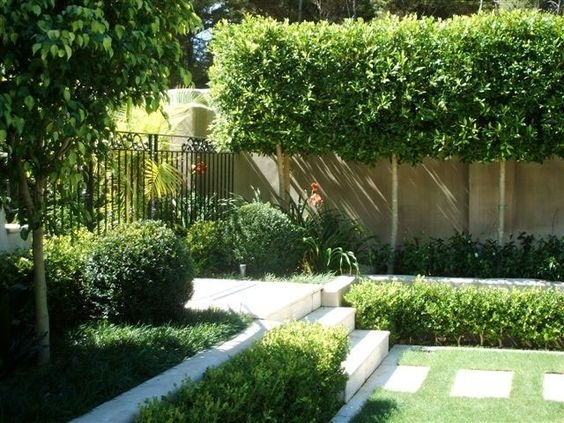 Landscaping Ideas For Front Yard Of Semi Detached : Landscaping ideas for front yard of semi detached garden