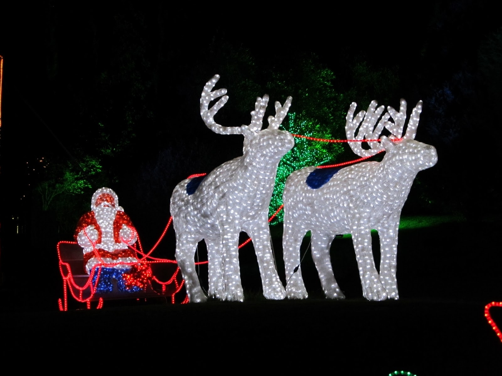 Plebs With Kids: Garden Of Lights @ Emperors Palace Review inside Garden Of Light At Emperors Palace