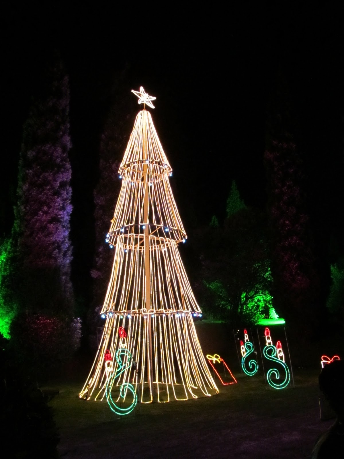 Plebs With Kids: Garden Of Lights @ Emperors Palace Review regarding Garden Of Light At Emperors Palace