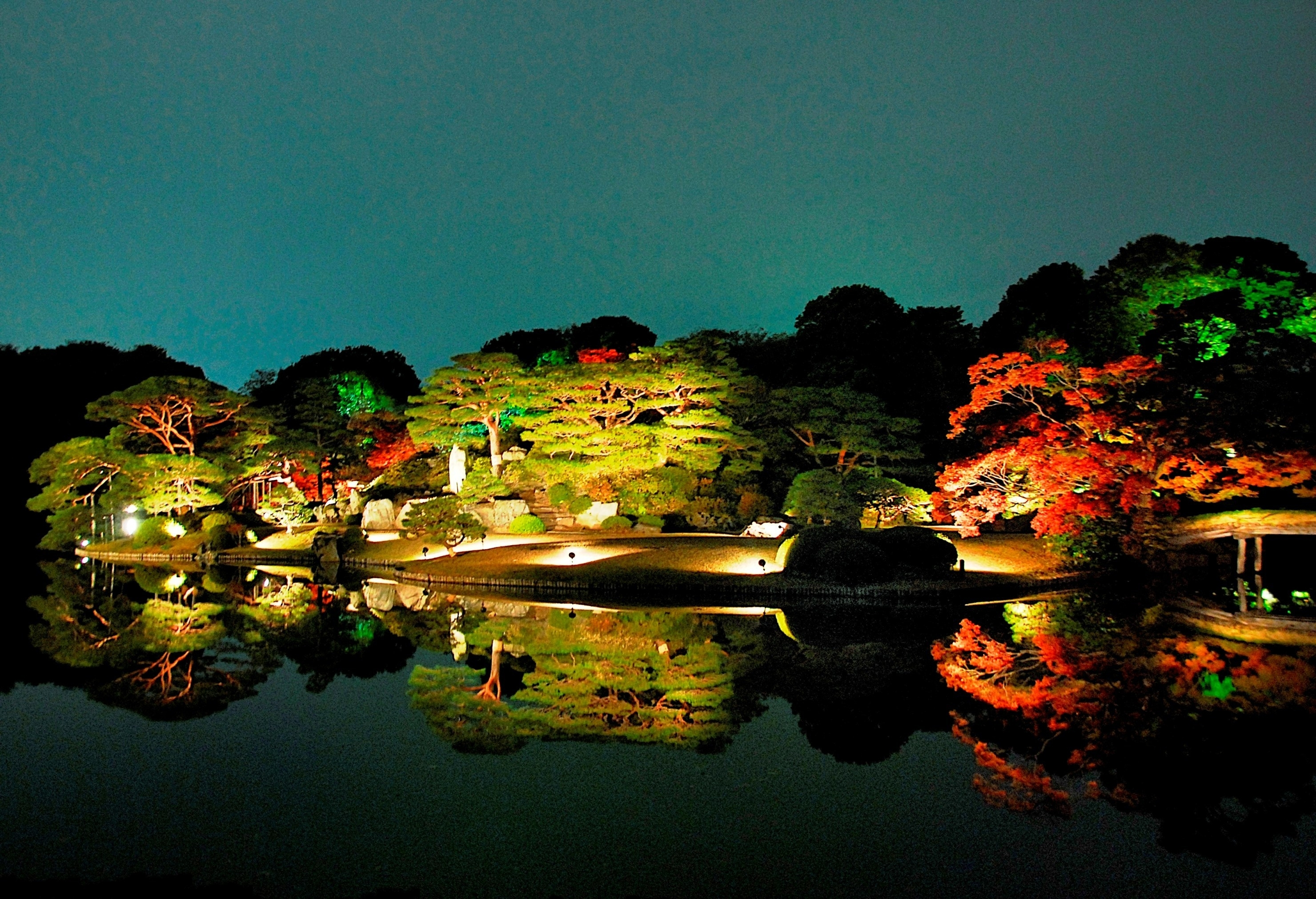 Rikugien Autumn Leaves Lightup | Things To Do In Tokyo within Rikugien Garden Autumn Light Up