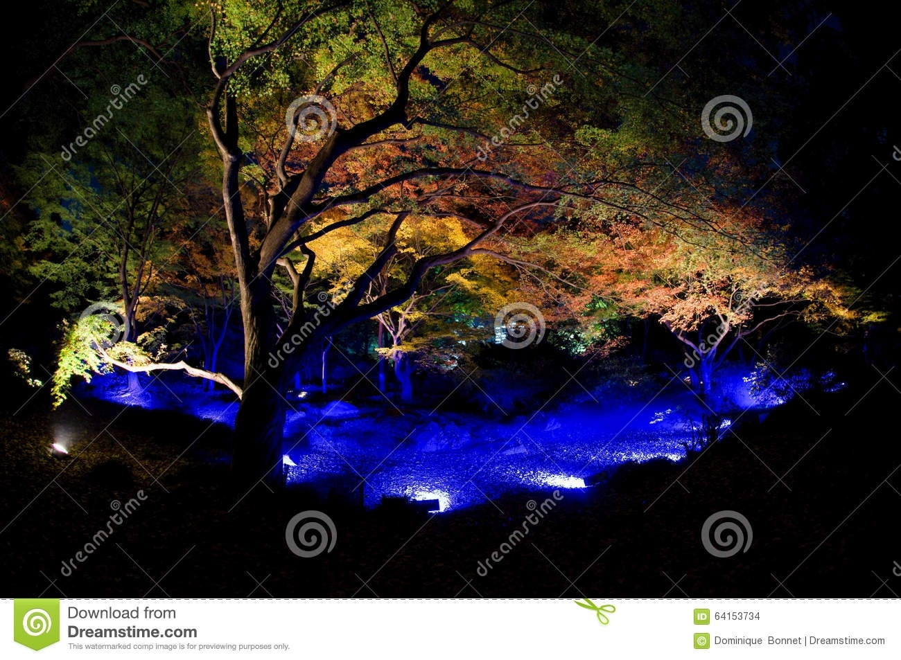 Rikugien Gardens Light Up Stock Photo - Image: 64153734 pertaining to Rikugien Garden Autumn Light Up
