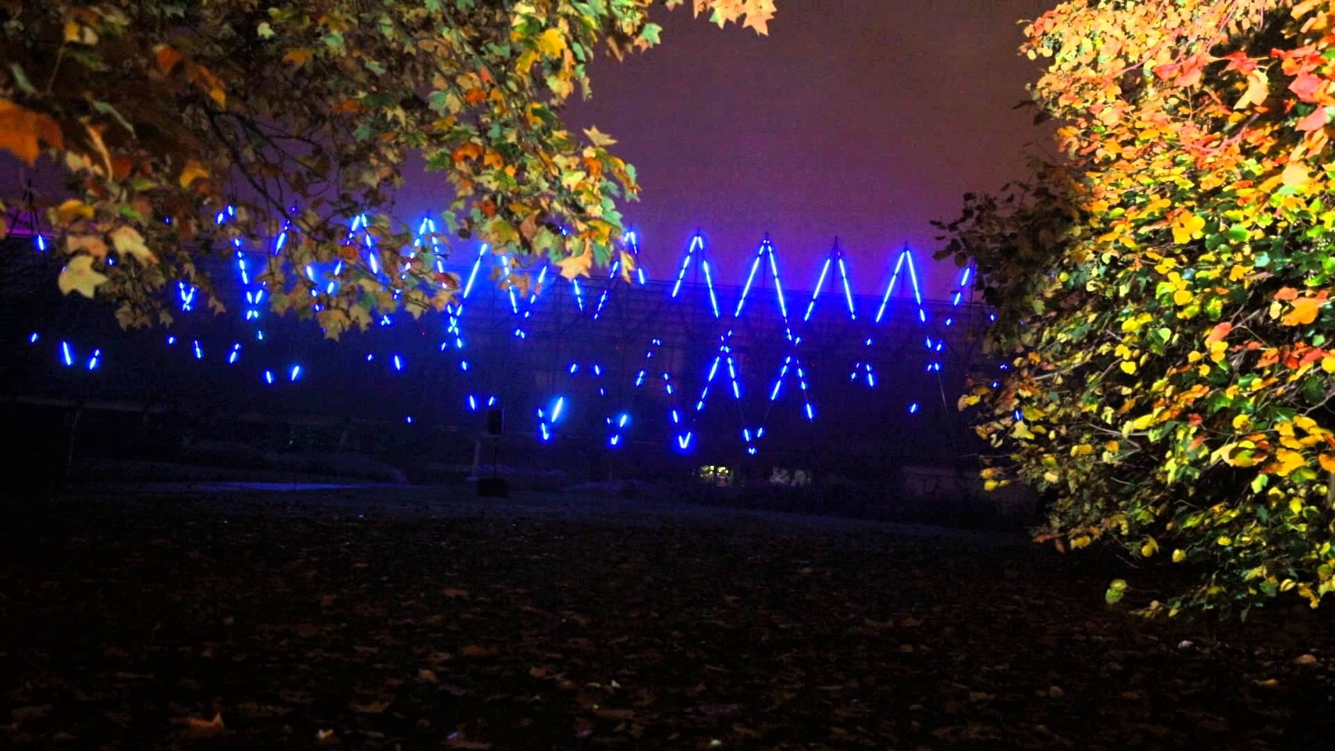 Royal Botanic Garden, Edinburgh, 2015, November, Lights, Colours in Botanic Garden Edinburgh Light Show