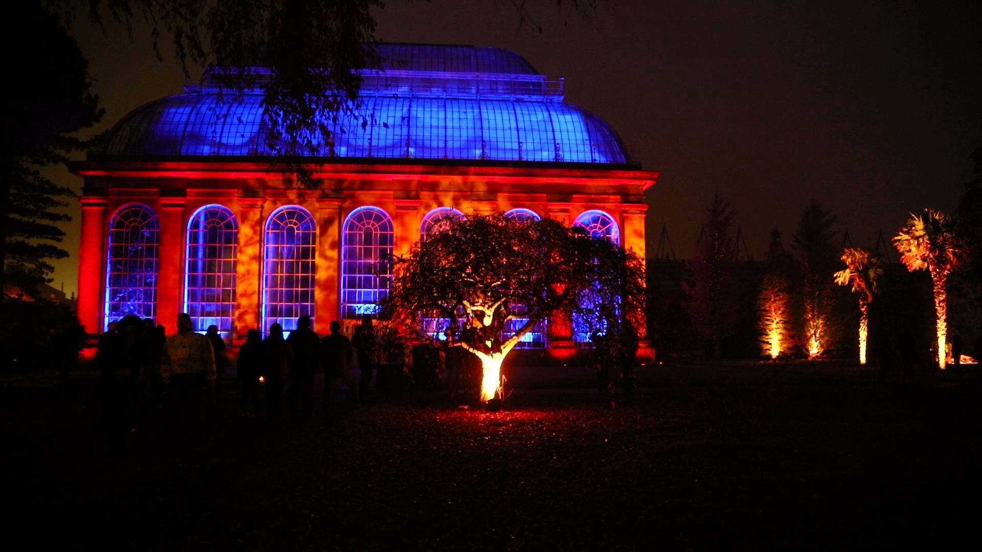 Royal Botanic Garden, Edinburgh, 2015, November, Lights, Colours throughout Botanic Garden Edinburgh Light Show