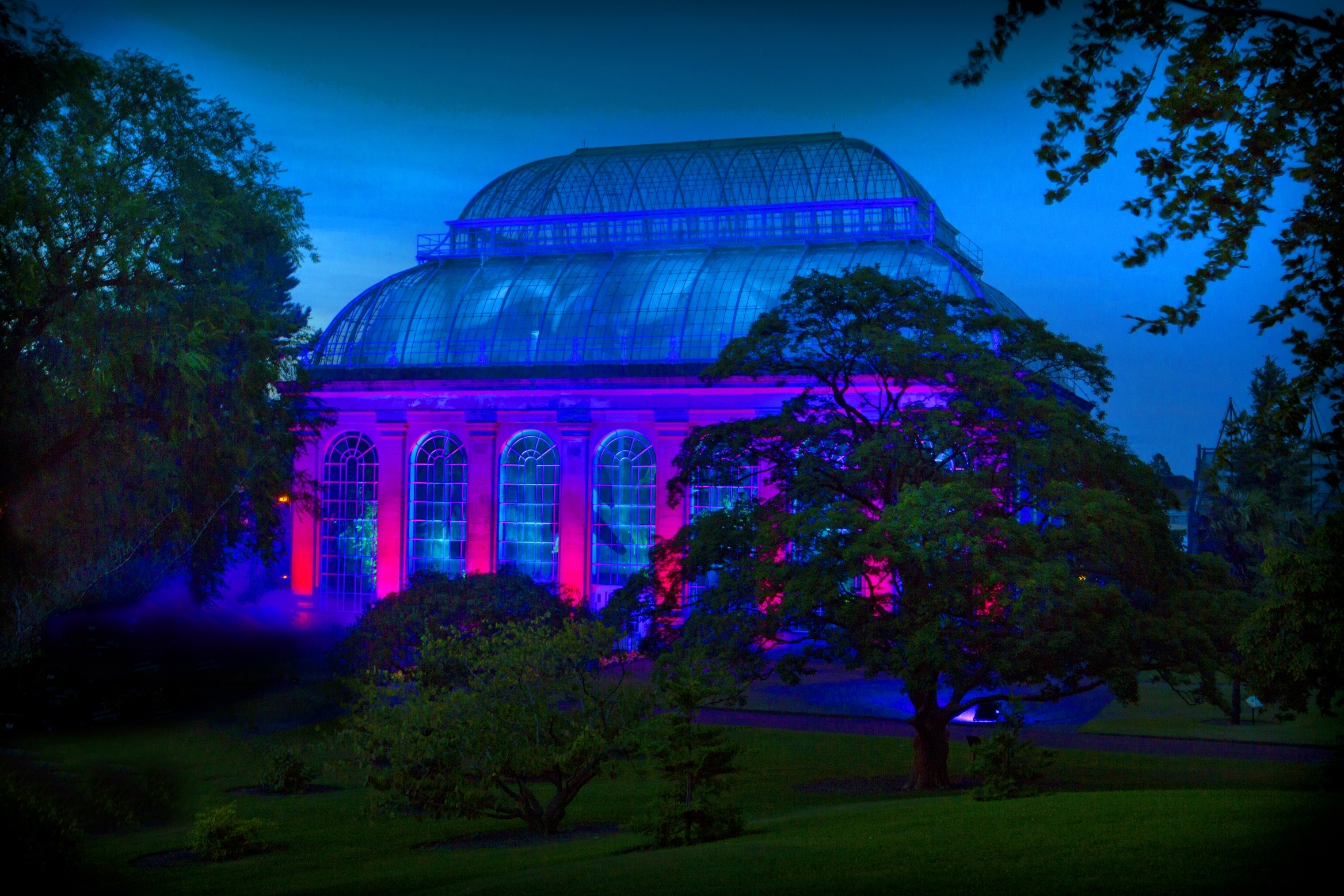 Royal Botanic Garden Edinburgh Light Exhibition Night In The inside Botanic Garden Glasgow Light Show