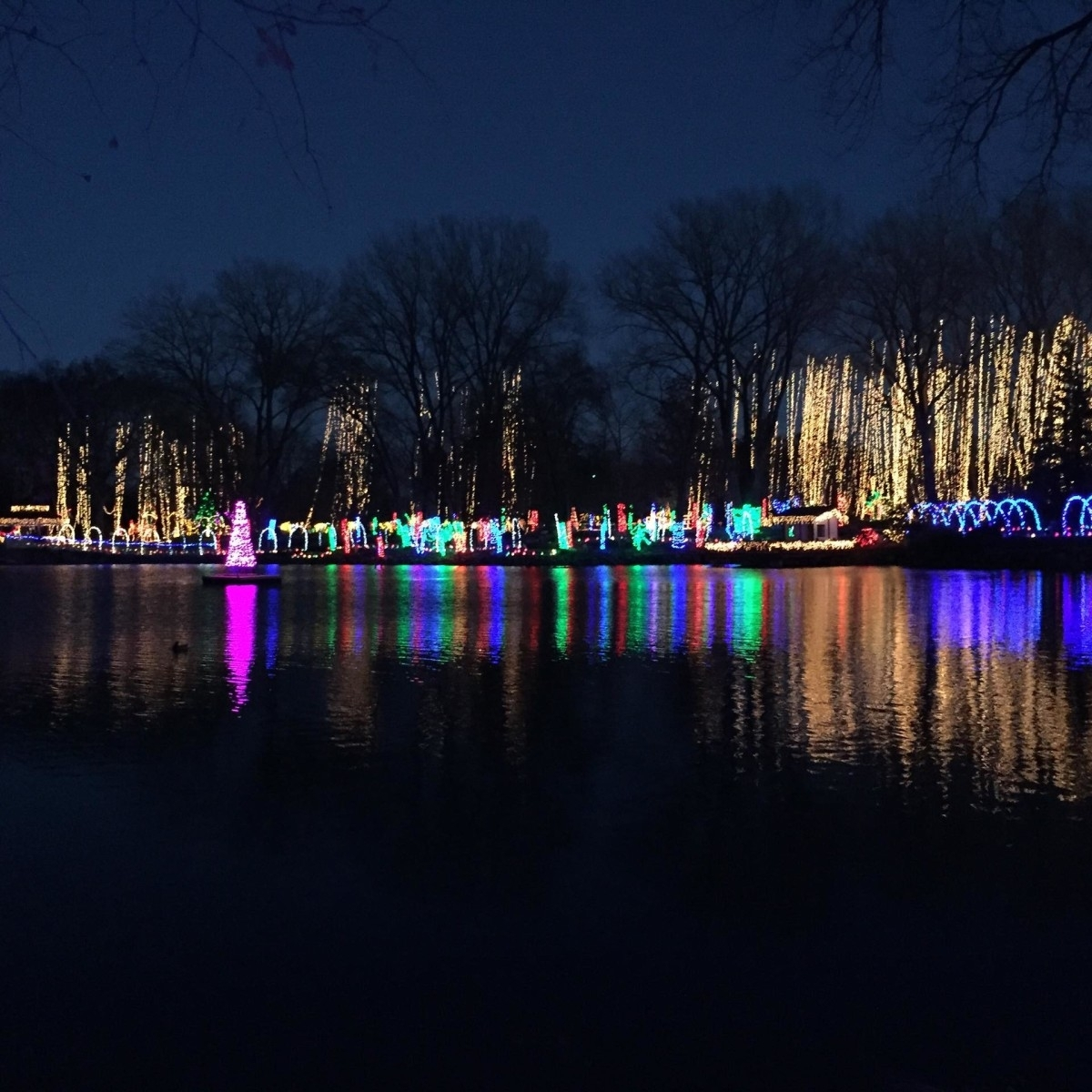 Sparkling And Spectacular: The Holiday Light Show - Rotary throughout Rotary Garden Light Show Janesville Wi