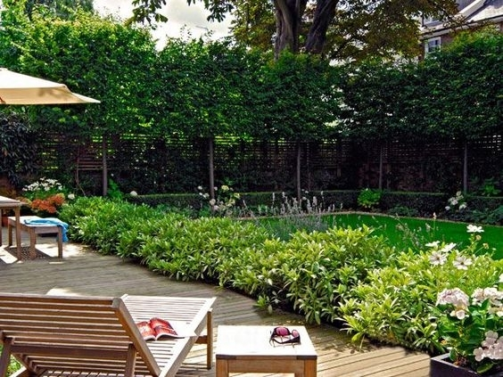 Stylish Backyard Privacy Landscaping Ideas Garden Design Garden with regard to Landscaping Ideas For Small Backyard Privacy