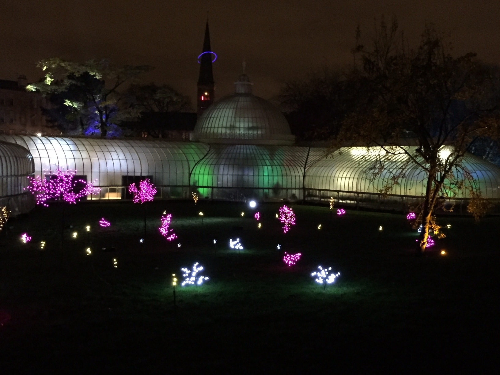 The Electric Gardens Ii: Glasgow Botanic Gardens | Westenddaze in Botanic Garden Glasgow Light Show