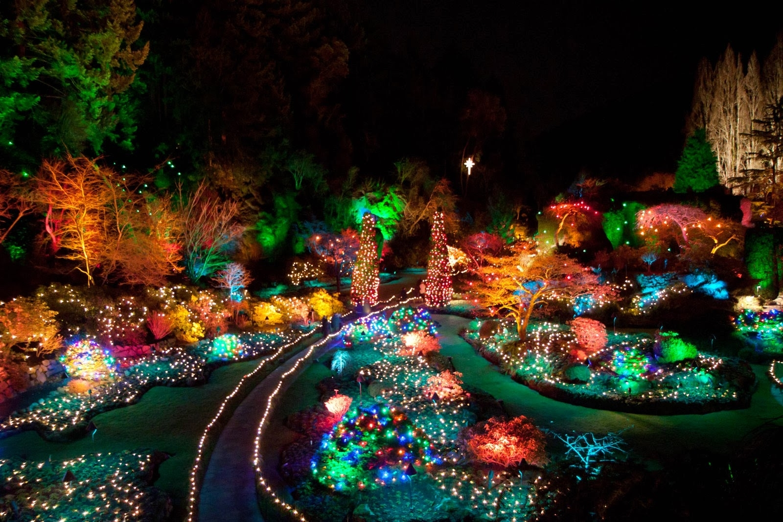 The Garden Of Lights At Emperors Palace – Hello Jhb regarding Garden Of Light At Emperors Palace