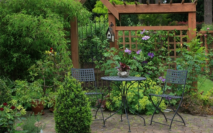 Top 10 Tips For Small Garden Design To Transform Your Space in Garden Design Tips For Small Gardens