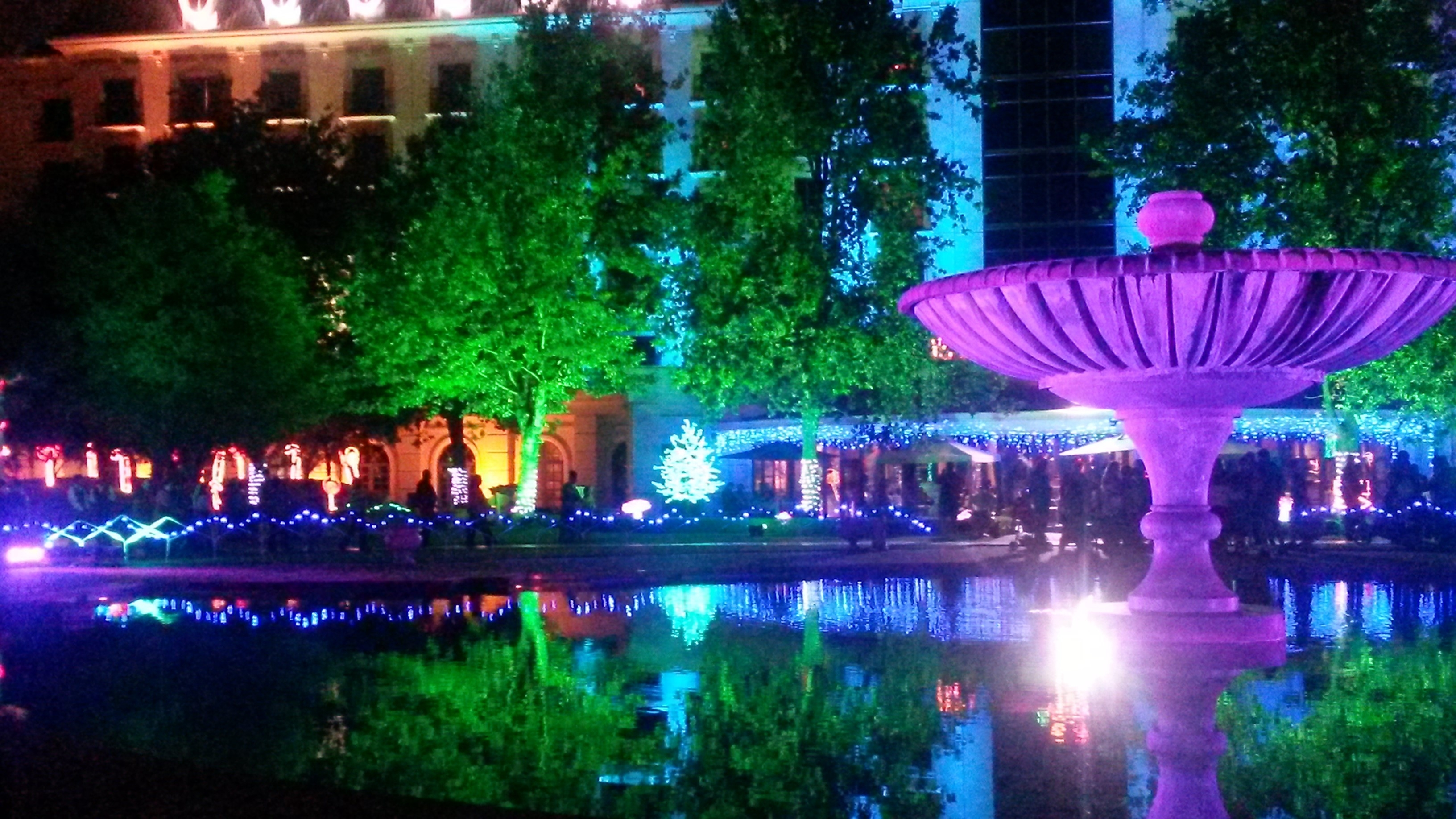 Weekly Phto Challenge – Nighttime | Mia Musings with regard to Garden Of Light At Emperors Palace