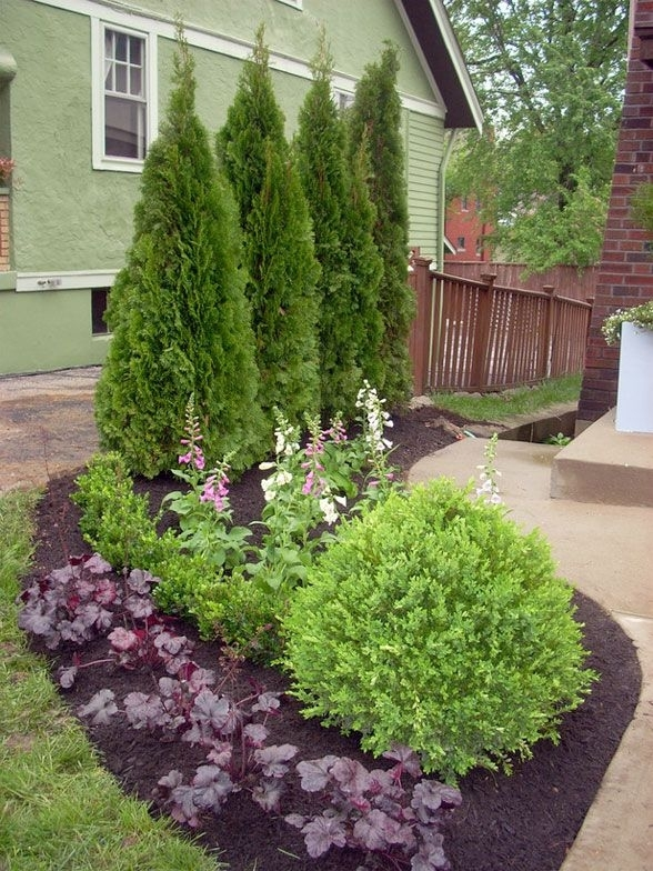 25+ Best Ideas About Privacy Landscaping On Pinterest | Privacy throughout Landscaping Ideas For Front Yard With Evergreens