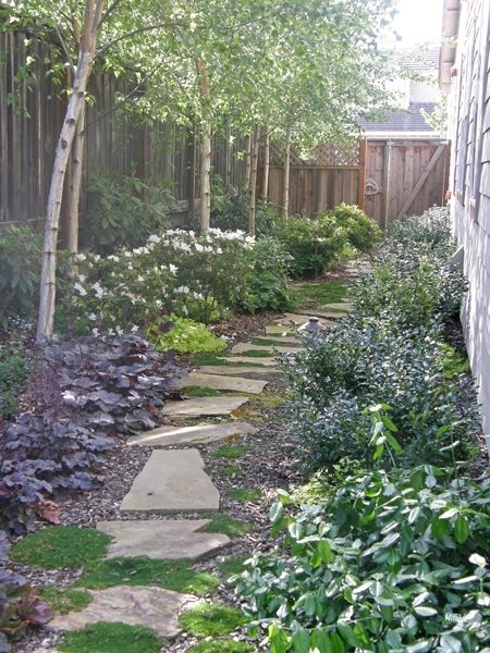 Landscaping ideas for narrow side yard garden design for Small narrow garden designs