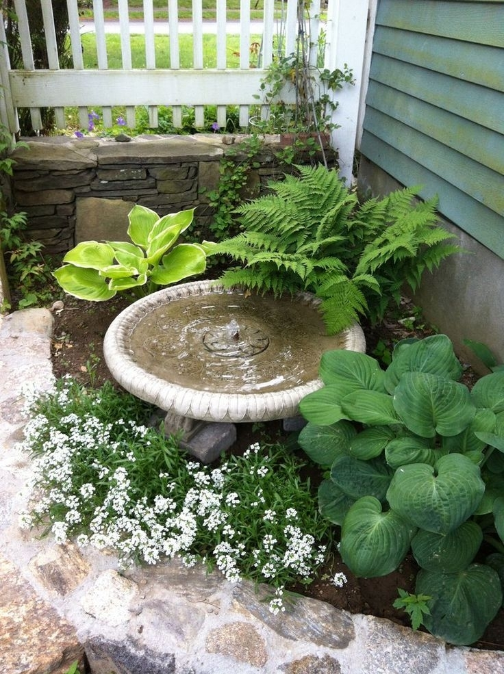 25+ Best Ideas About Small Front Yards On Pinterest | Front Flower with regard to Landscape Ideas For Small Front Gardens