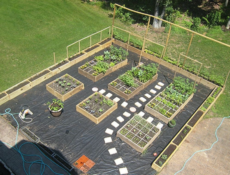 25+ Best Ideas About Small Vegetable Gardens On Pinterest throughout Small Backyard Vegetable Garden Design Ideas