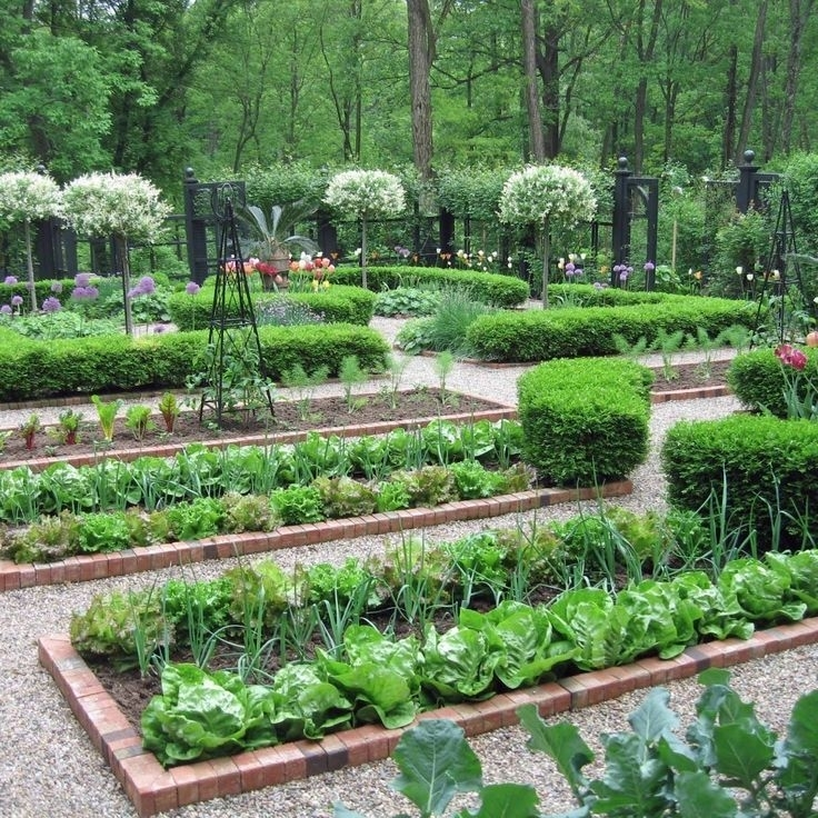 25+ Best Ideas About Small Vegetable Gardens On Pinterest with regard to Vegetable Garden Ideas For Small Gardens