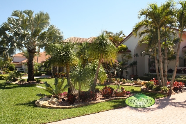 Attractive Trees Front Yard Landscaping Ideas 17 Best Ideas About with regard to Landscaping Ideas For Front Yard With Palm Trees