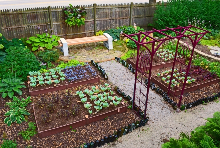 Beautiful Small Backyard Vegetable Garden Ideas 24 Fantastic intended for Small Backyard Vegetable Garden Design Ideas