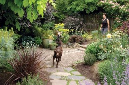 Creating A Dog-Friendly, Water-Efficient Yard | Backyards, Search throughout Small Backyard Landscaping Ideas With Dogs