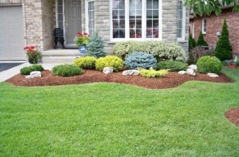 Evergreen Shrubs For Landscaping | Swerving Garden Bed With with Landscaping Ideas For Front Yard Shrubs