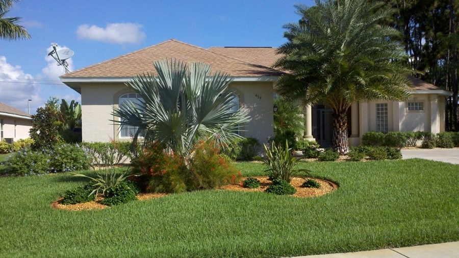 Front Yard Landscaping Ideas With Palm Trees   Home Design Ideas within Landscaping Ideas For Front Yard With Palm Trees