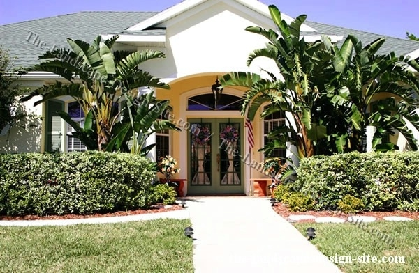 Heavily Planted Tropical Front Yard Planting Beds   Outdoor Living throughout Landscaping Ideas For Front Yard With Palm Trees