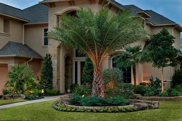 Innovative Front Yard Tree Landscaping Ideas Contemporary Shaded with regard to Landscaping Ideas For Front Yard With Palm Trees