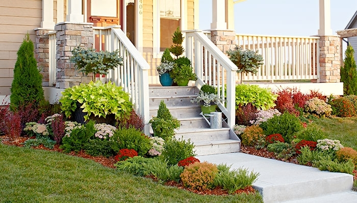 Landscaping Ideas: Evergreen Garden Bed with Landscaping Ideas For Front Yard With Evergreens