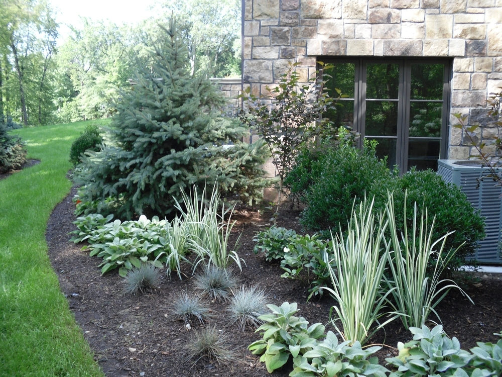 Landscaping Ideas For Front Yard With Evergreens_05030032 ~ Ongek inside Landscaping Ideas For Front Yard With Evergreens