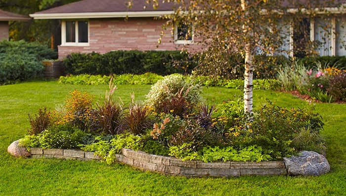 Landscaping Ideas: Front Yard Tree Bed within Landscape Ideas For Front Yard Zone 5